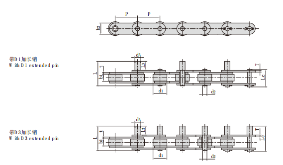 Conveyor Chains with Extended Pins