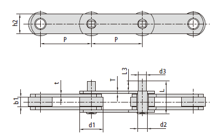 Conveyor chains with extended pins (M series)